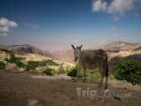Pohled na vesničku Wadi Dana
