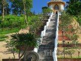 Schody k buddhistickému chrámu
