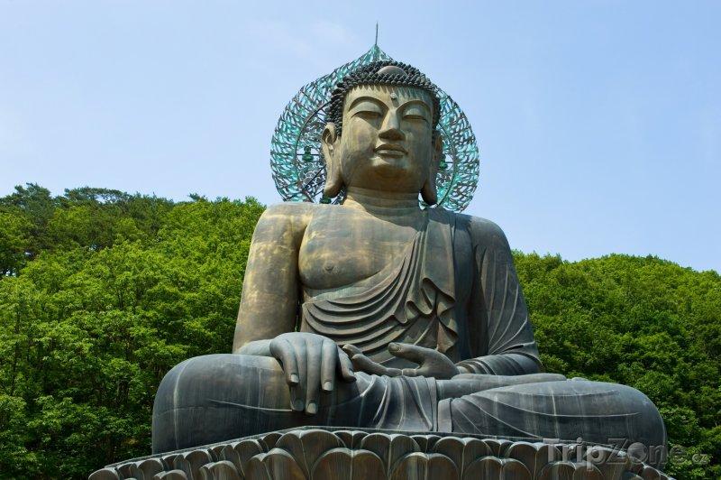 Fotka, Foto Socha Buddhy u paláce Sinheungsa (Jižní Korea)