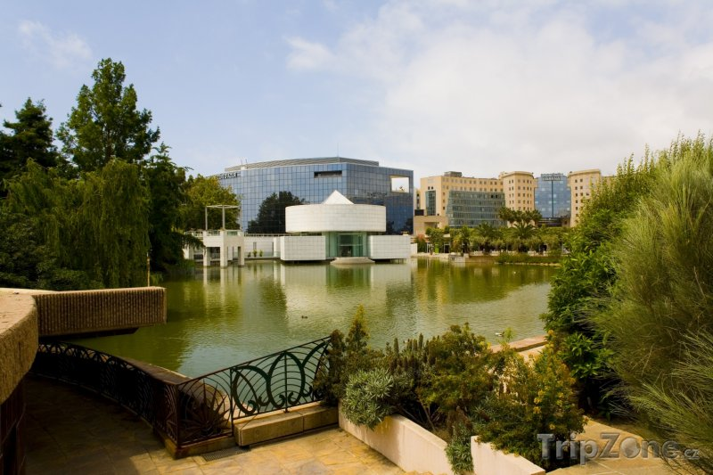 Fotka, Foto Jezírko v parku (Nice, Francie)