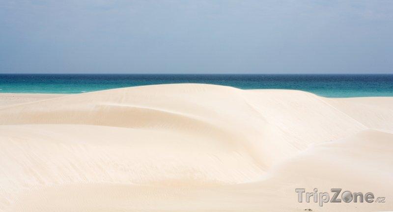 Fotka, Foto Pláž na ostrově Socotra (Jemen)