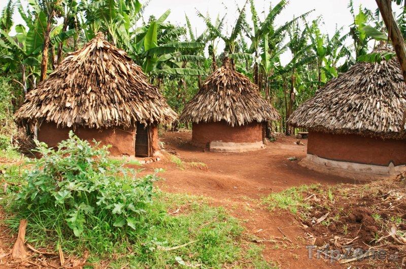 Fotka, Foto Tradiční ugandské chýše (Uganda)