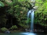 Vodopád Juan Diego v pralese El Yunque