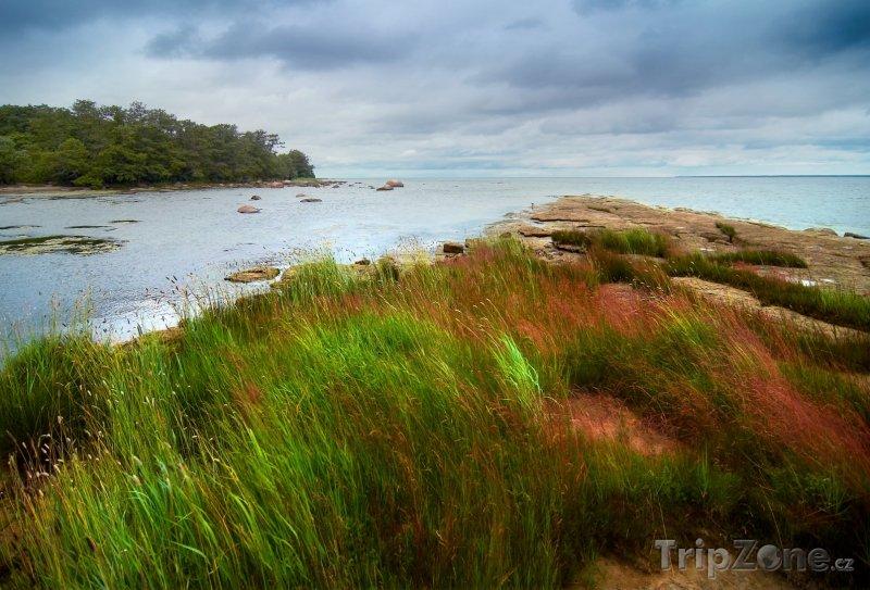 Fotka, Foto Baltské moře (Estonsko)