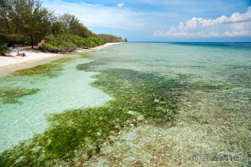 Fotka, Foto Pobřeží ostrova Gili Meno (Indonésie)