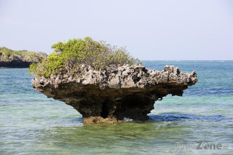 Fotka, Foto Skála v moři poblíž Mombasy (Keňa)