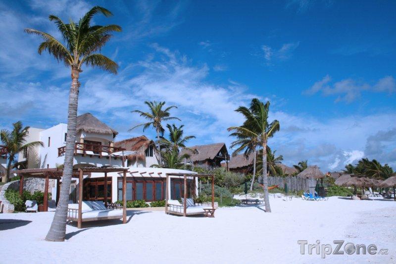 Fotka, Foto Tulum, domy na pláži (Mexiko)