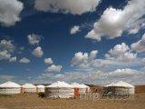 Jurty v poušti Gobi