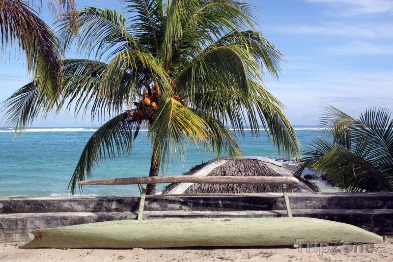 Fotka, Foto Kanoe pod palmou (Samoa)