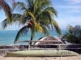 Kanoe pod palmou