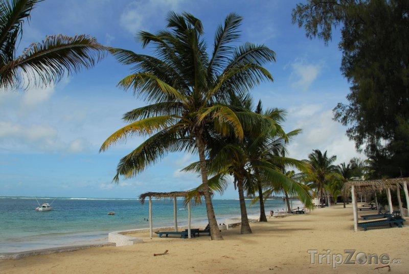 Fotka, Foto Pláž ve městě Malindi (Keňa)