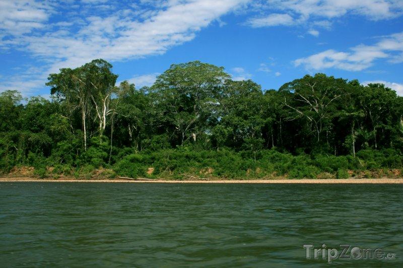 Fotka, Foto Řeka Amazonka (Surinam)