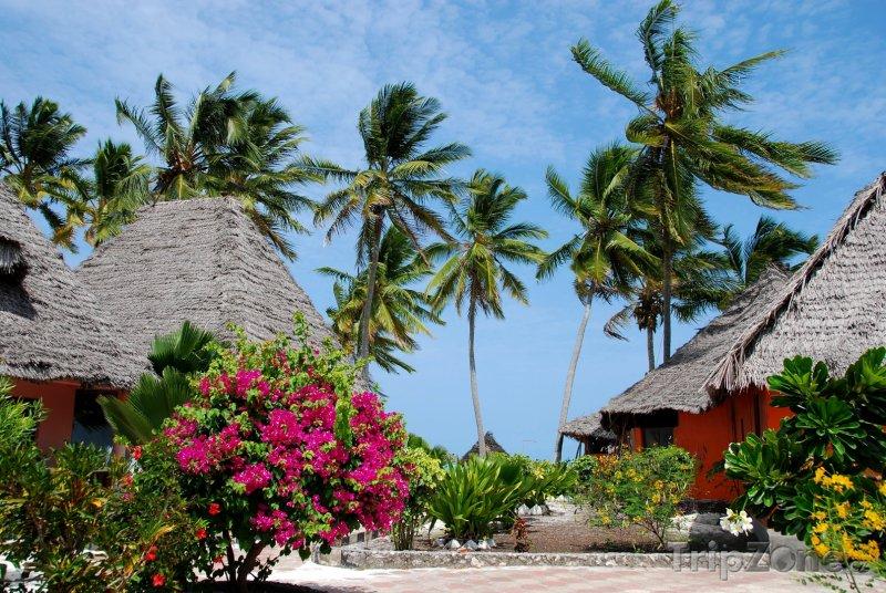 Fotka, Foto Vesnička Paje na ostrově Unguja (Tanzanie)