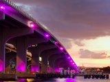 Barevný most, spojení centra města a Miami Beach