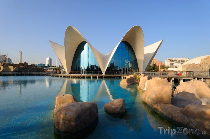 Fotka, Foto Město umění a věd, oceánografické akvárium (Valencie, Španělsko)