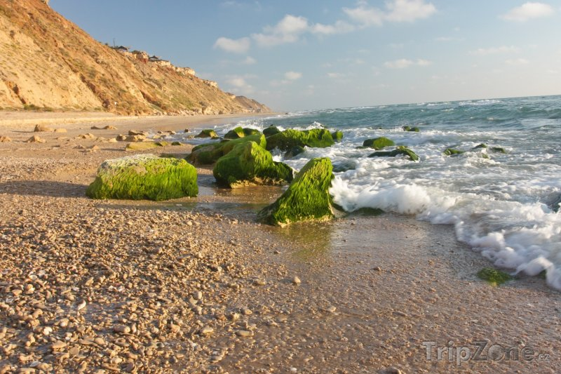 Fotka, Foto Pobřeží u letoviska Netanya (Izrael)