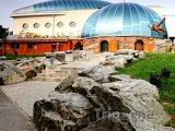 Bratislavská zoo, pavilon opic