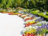 Grasalkovičův palác, zahrada