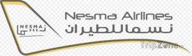 Logo letecké společnosti Nesma Airlines